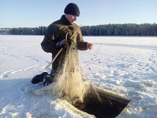 сямозеро отчеты о рыбалке